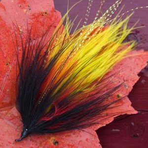 Marabou I tie for the fall fishing.