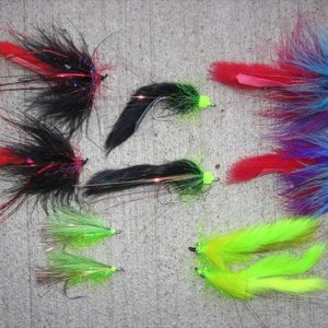 IMG 3476 Collection of BIG salmon flies (stainless steel trailer loops)