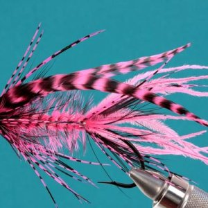 Pink Intruder on a hook