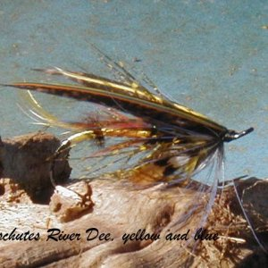 Deschutes River Dee, yellow and blue