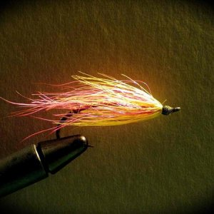 My fishing buddy' Steelhead fly  Pink Steel  photographed by me