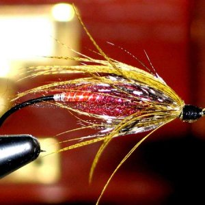 One of my designs a pseudo spey fly