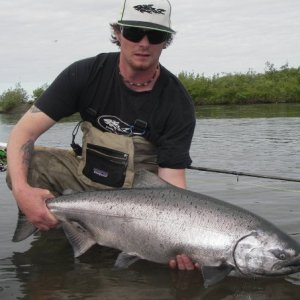 Kanektok river King Salmon