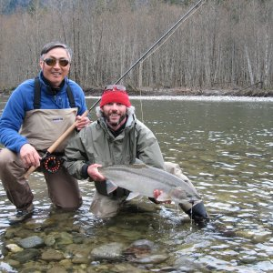 Squamish River Steelhead