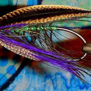 Un-named pattern with sprig elver wing