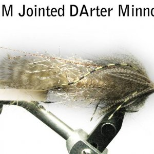Jointed Darter Minnow