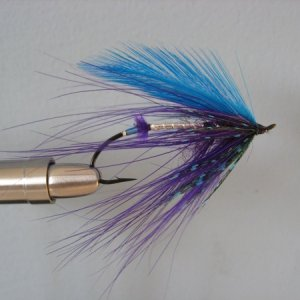 Blue Purple Spey