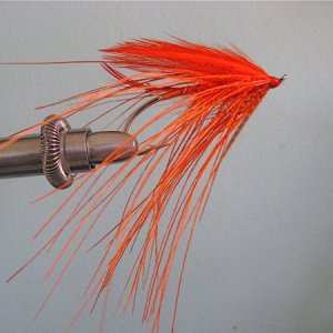 Orange Rhea Spey Experiment